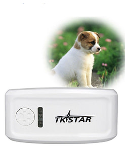Real Time Locator Chip for Pets Limited Time Deals ⏳ 2020 New Deals 🎉 Smart Electronics 📲 Platform: Free Refuse You Lose https://refuseyoulose.com