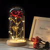 https://refuseyoulose.com Rose with LED Light Best Gifts of 2020 For Women 🌹 color: Black base|Blue|Bright color|Bright red|Gold|Multicolor|Pink|Pink and white|White|Purple|Red Refuse You Lose https://refuseyoulose.com/shop/rose-with-led-light/