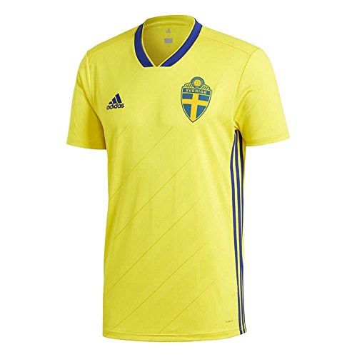 Sweden Soccer Jersey For Men, Women, or Youth (Any Name and Number) Gifts For Men Sports Jerseys For Men Sports Jerseys For Women Jerseys For Kids Soccer Jerseys International Soccer Jerseys color: Flag Concept|Third Concept|2018 Home|2019 Home|Home Concept|Road Concept